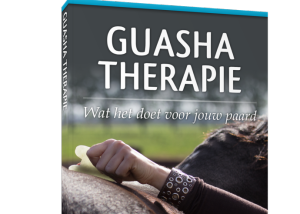 Ebook Guasha Therapie