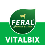 logo-vitalbix